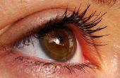 Hoe om uit te rusten van vermoeide ogen