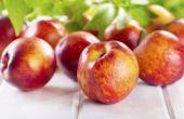 Het behouden van Nectarines