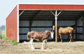 How to Build een onderdak voor paard