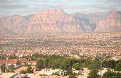 Aanbevolen kamerplanten voor Las Vegas