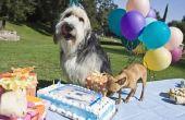 25 gratis dingen om te doen op je verjaardag