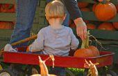 Informatie over Vintage Pull speelgoed Wagons
