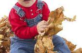 Voldoe aan autistische kinderen mijlpalen?