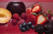 Welke soorten Fruit kunt u mengen met melk Kefir?