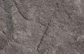 Hoe om te doden van de schimmel op een betonnen vloer