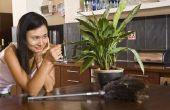 Warm Water slecht is voor planten?