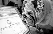 Over Dell Laptop gebruikershandleidingen