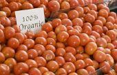 Hoe kook tomaten