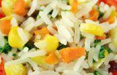 Oster rijst Steamer en fornuis instructies