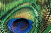 Wat zijn de verschillende soorten iriserende afwerkingen?