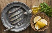 Verschil tussen ansjovis & Sardines