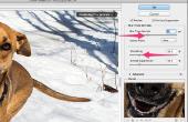 Hoe te verwijderen van de Motion Blur met Photoshop