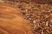 Hoe maak je hout Putty of Wood Filler