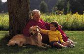 Hoe landschap een achtertuin voor honden