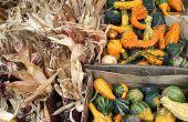 Thanksgiving voedsel ideeën voor Preschool partij