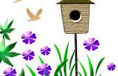 Vogel huizen & Polen
