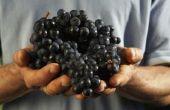 Hoe schil een druif