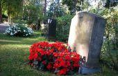 Bloemen aan de Plant op een graf