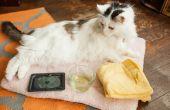 Hoe te verwijderen van een Trap lijm van een huisdier