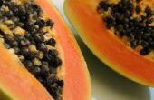 Het gebruik van Papaya bij de behandeling van jicht ziekte