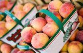 Hoe kan ik het bewaren van perziken zonder Canning hen?