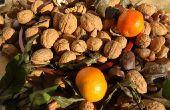 Het behouden van Fruit met Silica Gel filter