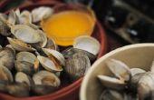 Hoe te poetsen Clam Shells