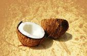 Hoe bewaart u verse kokosnoot vlees
