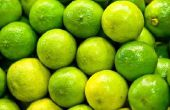 How to Make citroenzuur poeder