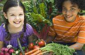 Kinderen van de tuin: lessen in levenslang voeding