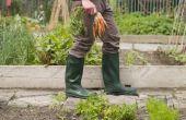 How to Build een verticale tuin met behulp van PVC-buizen