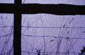 Hoe te identificeren van antieke prikkeldraad