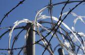 Ouderlijke rechten van een vader in de gevangenis