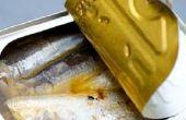 Sardines ooit ga slecht?
