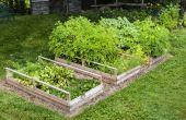 Gebouw en plantgoed van verhoogde bedden
