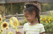 Science activiteiten om te leren van het gevoel van zicht