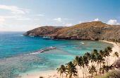 De beste Hawaii All Inclusives