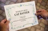 Hoe maak je grappige certificaten