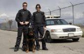 De voordelen van politie BDU uniformen