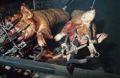 How to Cook een hele varken op een roker