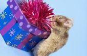 How to Keep muizen het huis uit