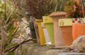 Hoe maak je tuin Decor met terracotta potten
