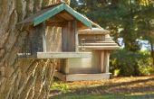 Hoe u een Birdhouse koppelt aan een boom zonder schade