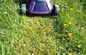 Het verschil in wasmiddel & niet wasmiddel olie voor een grasmaaier
