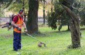 Het gemiddelde salaris van een gazon onderhoud werknemer