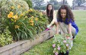 Community Service projecten voor kinderen jonger dan 10