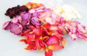 Hoe te drogen Rose bloemblaadjes