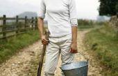 Subsidies voor vrouwen in de landbouw in Texas