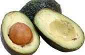 Hoe maak je een Avocado langer duren