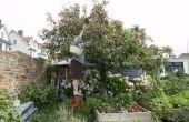 Is de vlek veilig voor verhoogde plantaardige bedden?